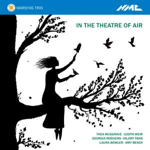 In the Theatre of Air Product Image