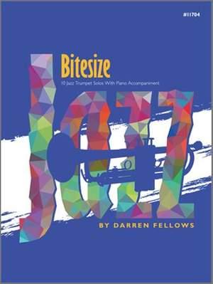 Darren Fellows: Bitesize
