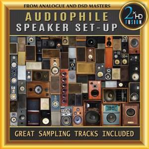 Audiophile Speaker Set-Up