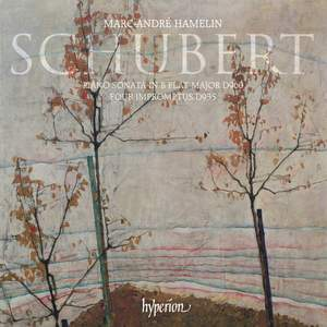 Schubert: Piano Sonata No. 21 & Four Impromptus, D935 Product Image
