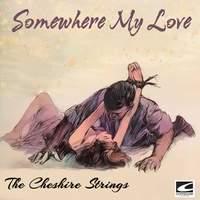 Somewhere My Love