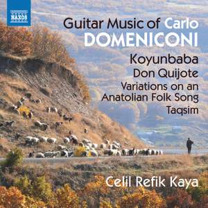 Carlo Domeniconi: Guitar Music