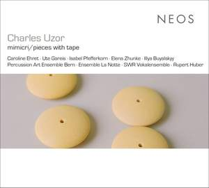 Charles Uzor: Mimikry / Pieces With Tape