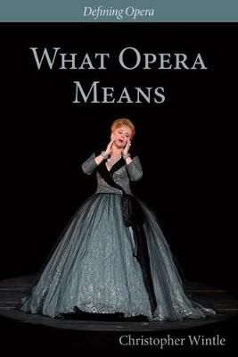 What Opera Means - Categories and Case-studies