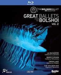 Great Ballets from The Bolshoi Volume 2