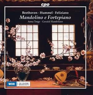 Mandolino E Fortepiano