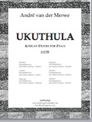 Andre van der Merwe: Ukuthula Product Image