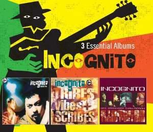 Incognito - 3 Essential Albums