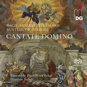 Bach, Mozart & Telemann: Cantatas And Motets