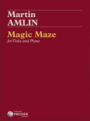 Martin Amlin: Magic Maze