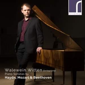 Walewein Witten plays Haydn, Mozart & Beethoven