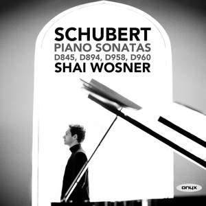 Schubert: Piano Sonatas D845, D894, D958 & D960