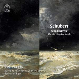 Schubert: Lebensstürme. Music for Piano Four-Hands