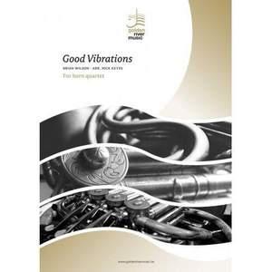 Mike Love_Brian Wilson: Good Vibrations