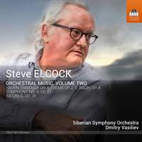 Steve Elcock: Orchestral Works Volume Two
