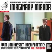 Imaginary Mirror