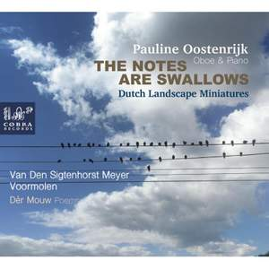The Notes Are Swallows: Dutch Landscape Miniatures