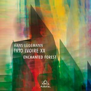 Enchanted Forest Product Image