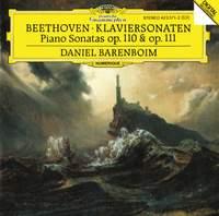 Beethoven: Piano Sonatas Nos. 31 & 32