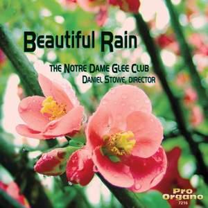 Beautiful Rain