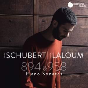 Schubert: Piano Sonatas D894 & D958