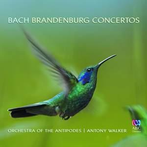 Bach: Brandenburg Concertos Product Image