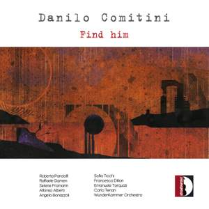 Danilo Comitini: Find Him Product Image