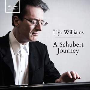 A Schubert Journey Product Image