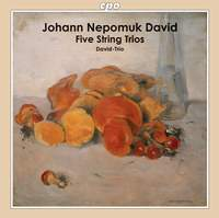 Johann Nepomuk David: Five String Trios