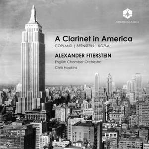A Clarinet in America Product Image