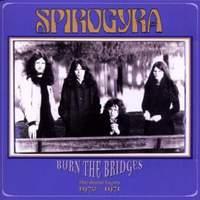 Burn the Bridges
