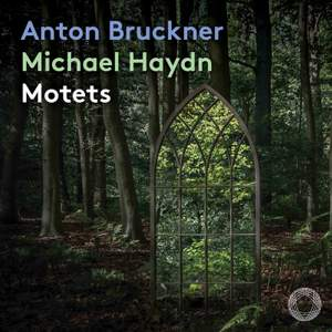 Motets: Music by Anton Bruckner; Michael Haydn