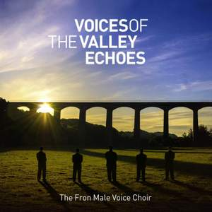 Voices of the Valley: Echoes