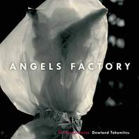 Angels Factory