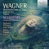 Wagner: Wesendonck Lieder (arr. Henze), Siegfried Idyll, Träume; Sciarrino: Languire a Palernmo