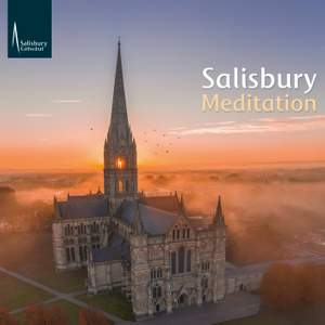 Salisbury Meditation