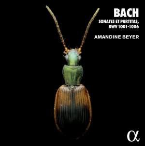 Bach: Sonates et partitas, BWV 1001-1006