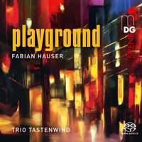 Fabian Hauser: Playground