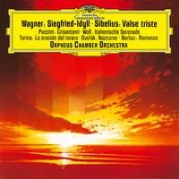 Wagner: Siegfried Idyll; Puccini: Crisantemi; Turina: La Oracion Del Torero; Berlioz: Reverie Et Caprice Romance Op. 8; Sibelius: Valse Triste, Op. 44; Dvořák: Notturno in B Major, Op. 40