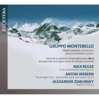 Verein Fur Musikalische Privatauffurunghen Vol. 6